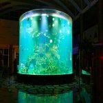 Ĉina kutima malmultekosta súper granda ĉirkaŭvoja glasa akvarioj klaraj cilindroj akrilaj fiŝaj tankoj