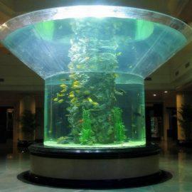 pmma glasa akvario duone cilindro perspex klara fiŝujo