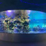 Fabriko provizas fiŝajn kalikojn, Ronda glasa tanka akvarioj