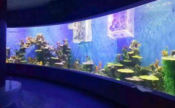 Akrila Waterscape