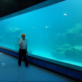 Mastrumpa muro UV akrila panelo por akvario / oceanaro