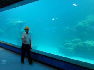 Mastrumpa muro UV akrila panelo por akvario, oceanaro
