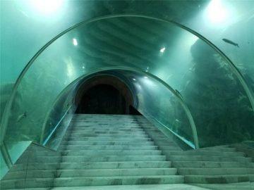 Akrila tunelo akvario projekto prezo