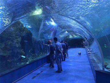 Propra plexiglass akrila tunelo akvario