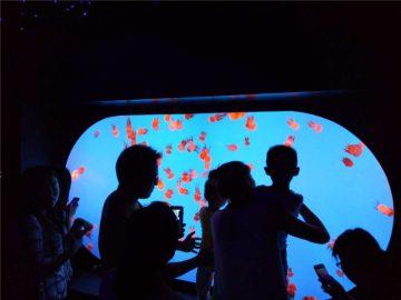 Modifita malsama grandeco formo vario Jellyfish Tank
