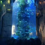 travideblaj akrilaj paneloj por granda akvario, fiŝaj tankoj